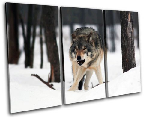 White Wolf Wild Animals - 13-0980(00B)-TR32-LO